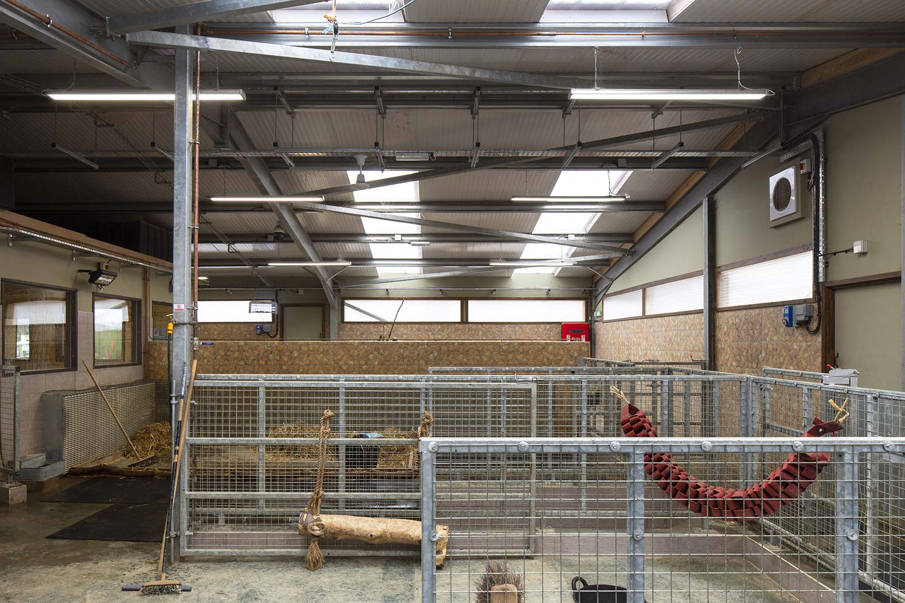 Award-winning 'green' zoo conserves energy by installing Goodlight